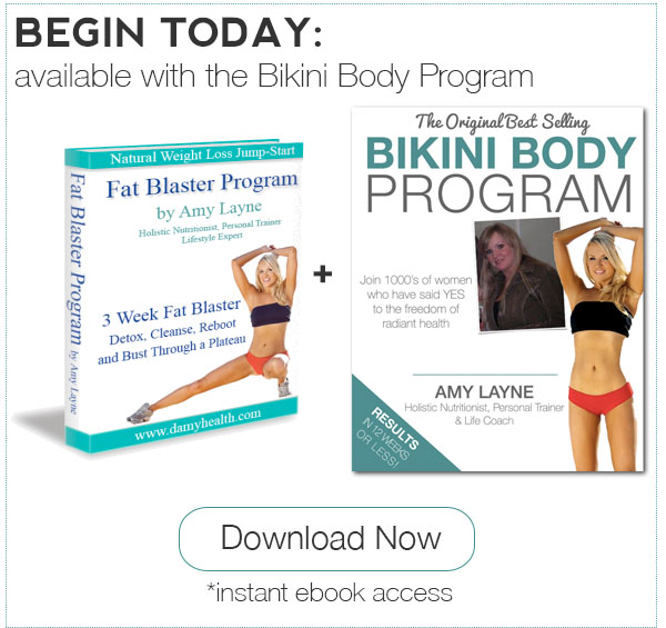 Fat Blaster eBook Plus Bikini Body Program