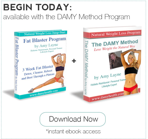 Fat Blaster eBook plus DAMY Method Program