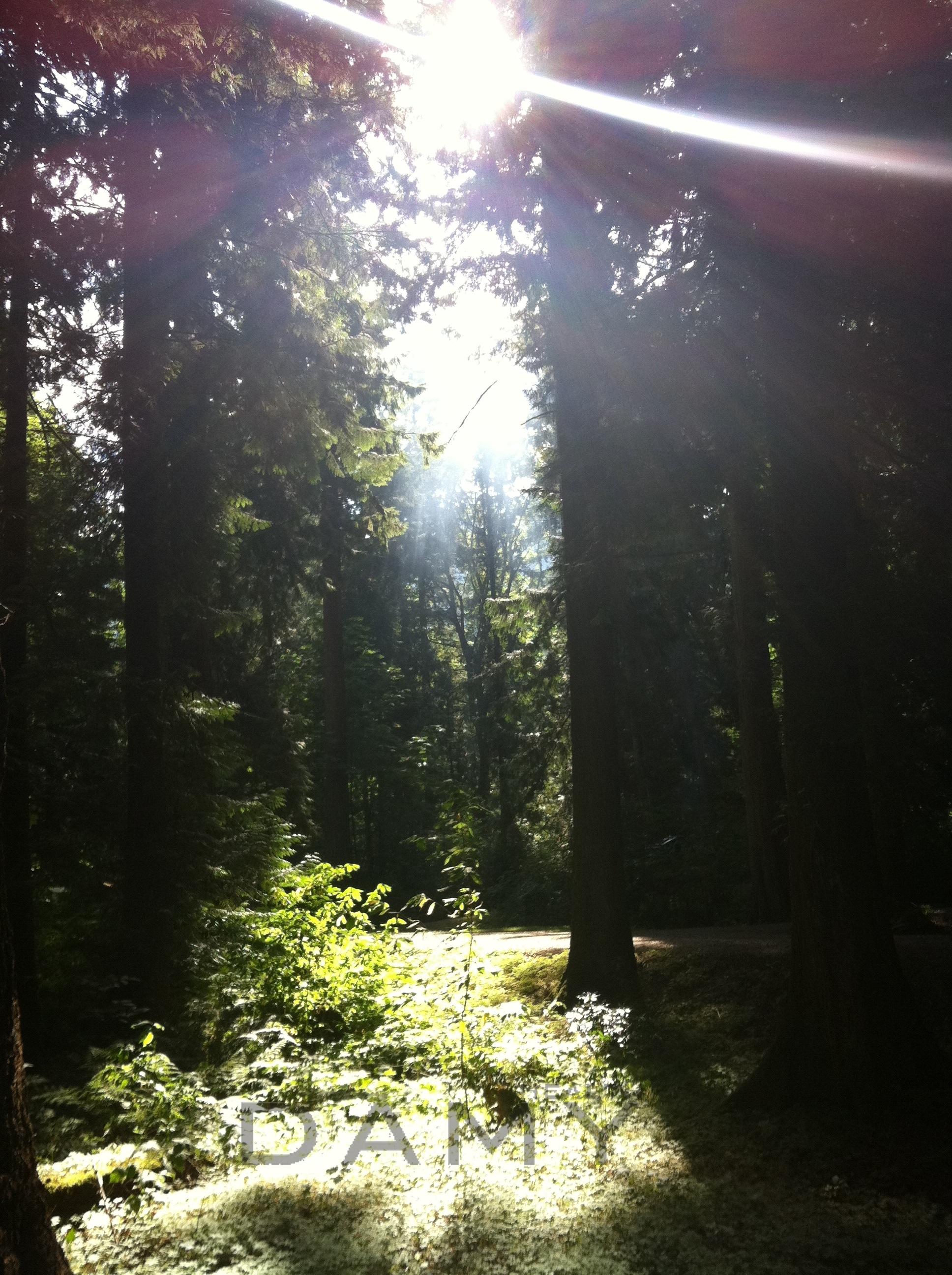 Camping at Cultus Lake