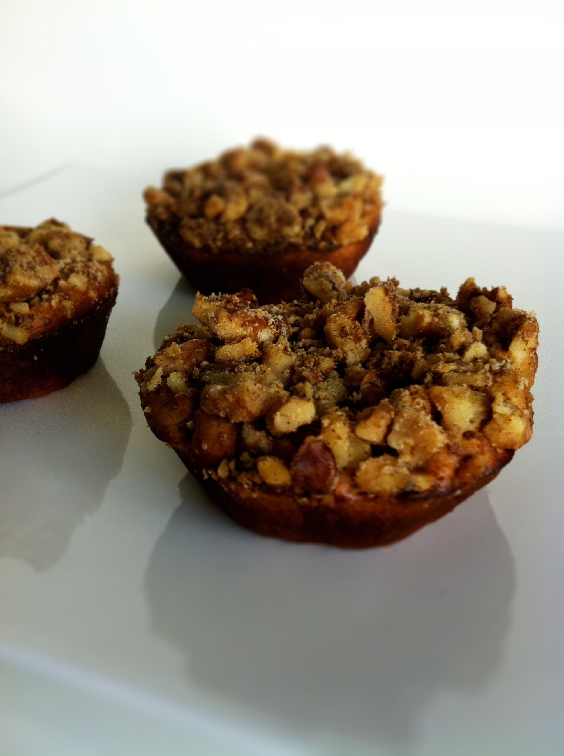 Damy S Best Protein Ball Bar And Muffin Recipes