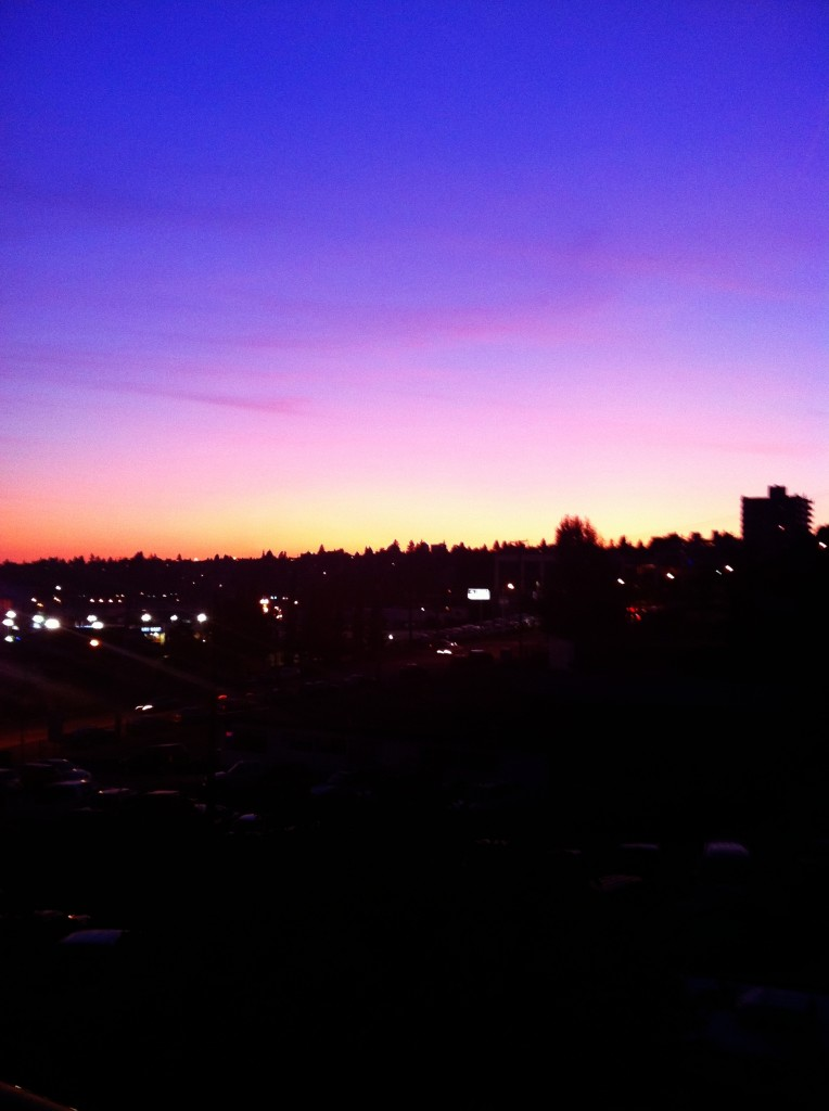 Vancouver Sunset View