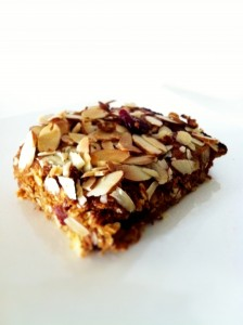 Pumpkin Cranberry Almond Protein Bar