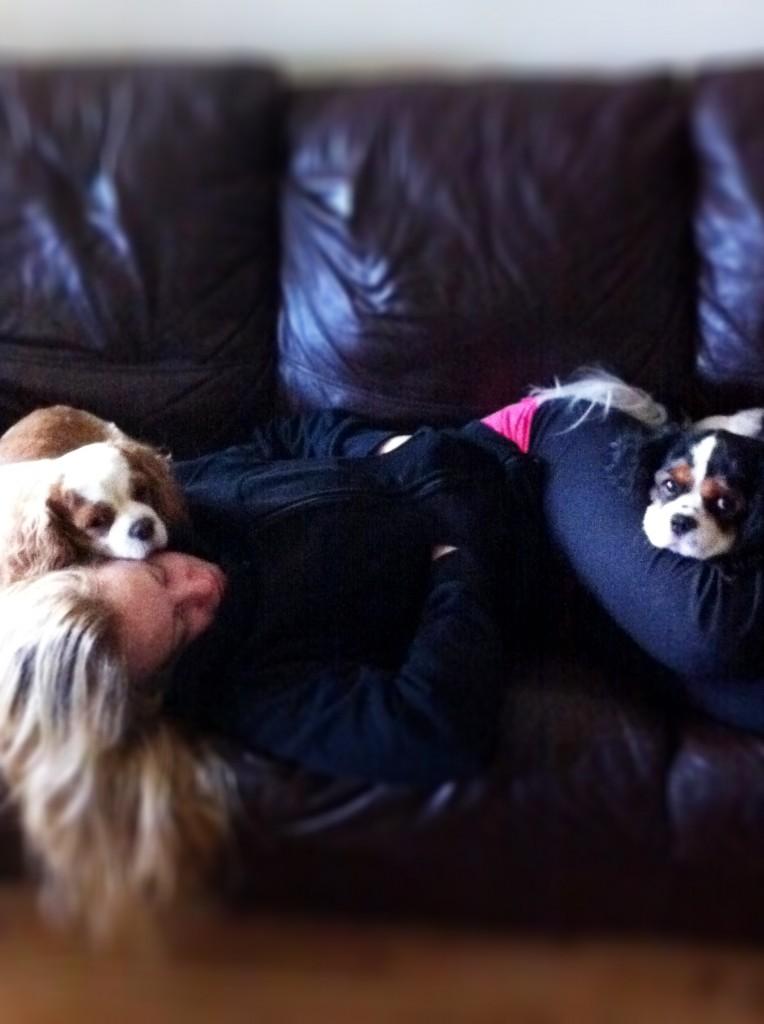 DAMY Health Dogs Nap Cute