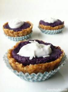 Vegan No-bake Blueberry Pies