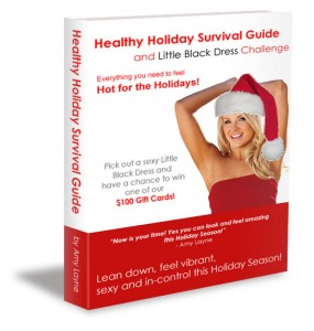 Holiday Survival Guide Book Cover 2014