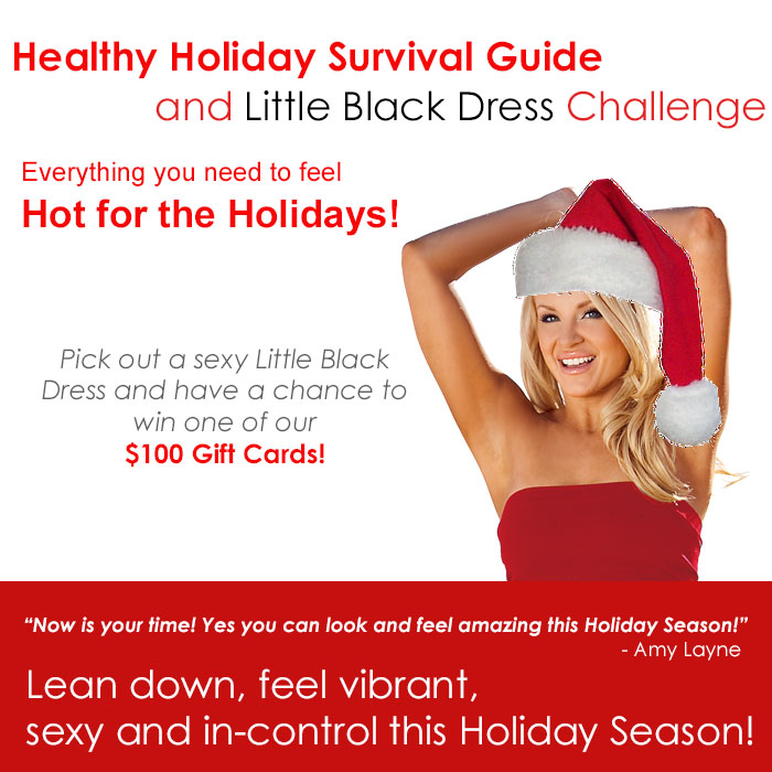 Holiday Survival Guide FLAT SHEET 2014