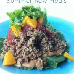 The Best summer Raw Meals