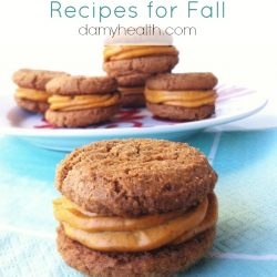 Ginger-Snap-Cookies-with-Pumpkin-Cheesecake-Buttercream-vegan-and-gluten-free