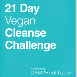 21 Day Vegan Cleanse Challenge eBook Cover