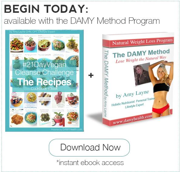 21 Day Vegan Cleanse Recipes plus DAMY Method Program