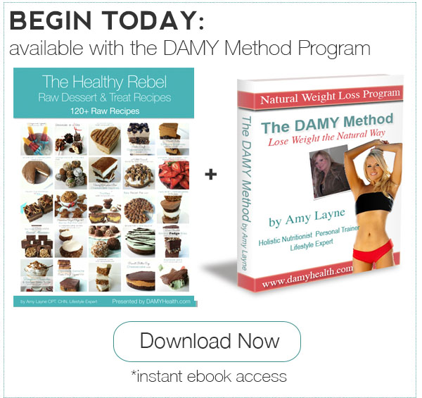 Healthy Rebel Raw Recipes eBook plus DAMY Method Program
