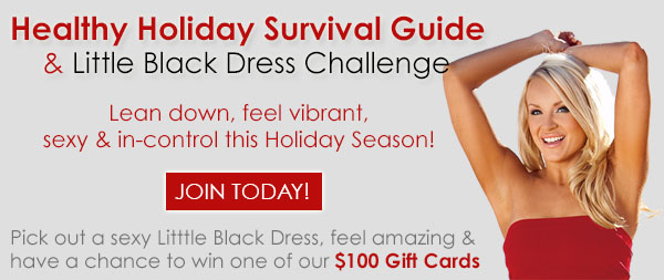 Holiday Survival Header Email 2014
