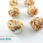 Coconut Ice Cream Snow Balls