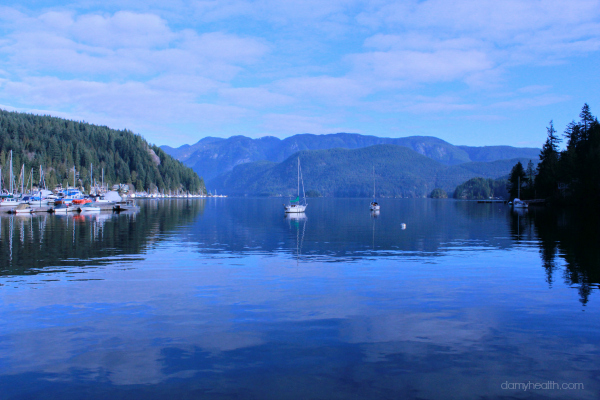 The Vancouver Naturopathic Doctor1