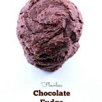 Flourless Chocolate Fudge Cookies (Vegan & Gluten Free)