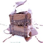 Double Chocolate Fudge Ice Cream Slice