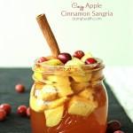 Cozy Apple Cinnamon Sangria