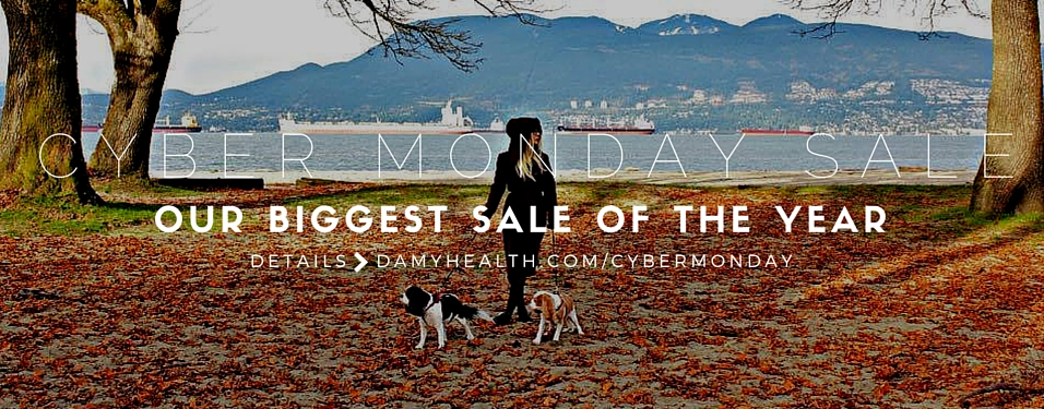 It's Cyber Monday: Your New You Starts Now