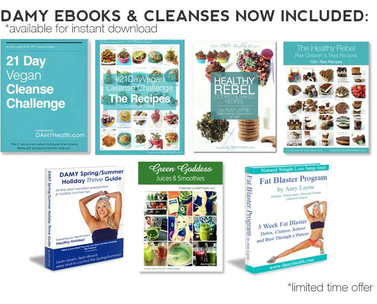 DAMY eBook Bonus Material