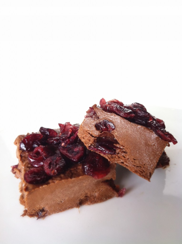 chocolate cranberry protein fudge