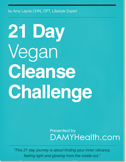 21 Day Vegan Cleanse Challenge eBook Cover Sidebar