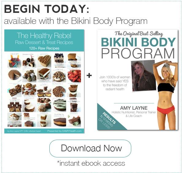 Healthy Rebel Raw Recipes eBook Plus Bikini Body Program
