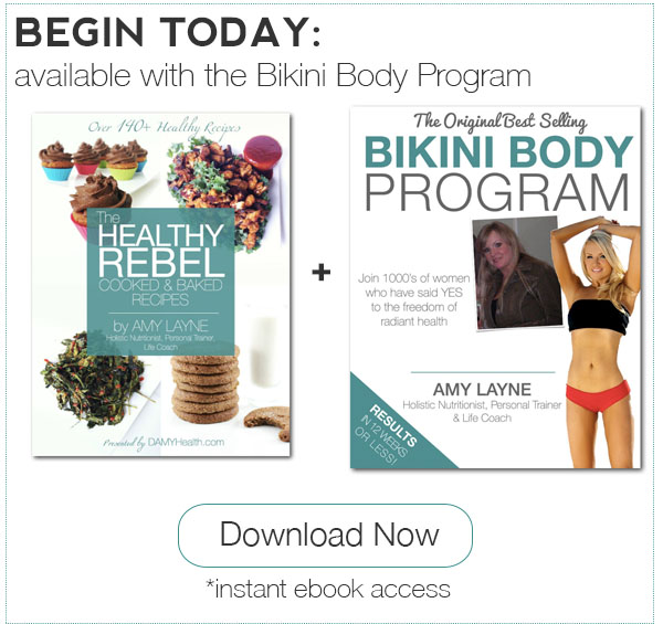 Healthy Rebel Cooked and Baked eBook Plus Bikini Body Program