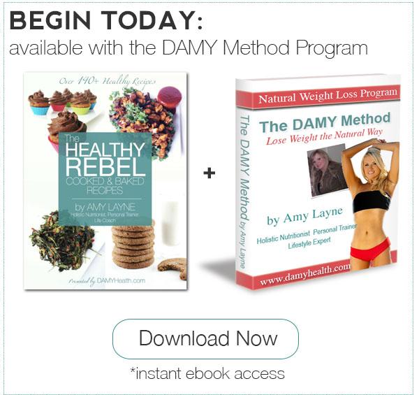 Healthy Rebel Cooked and Baked eBook plus DAMY Method Program