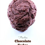 Flourless Chocolate Fudge Cookies (Vegan & Gluten Free)