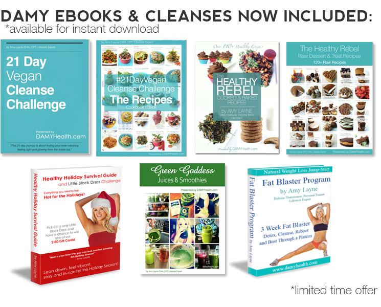 DAMY eBook Bonus Material holiday
