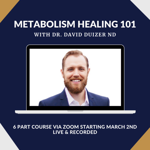 Metabolism Healing Course with Dr. David Duizer ND